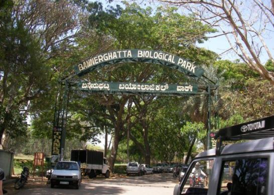 Bannerghatta National Park Entrance